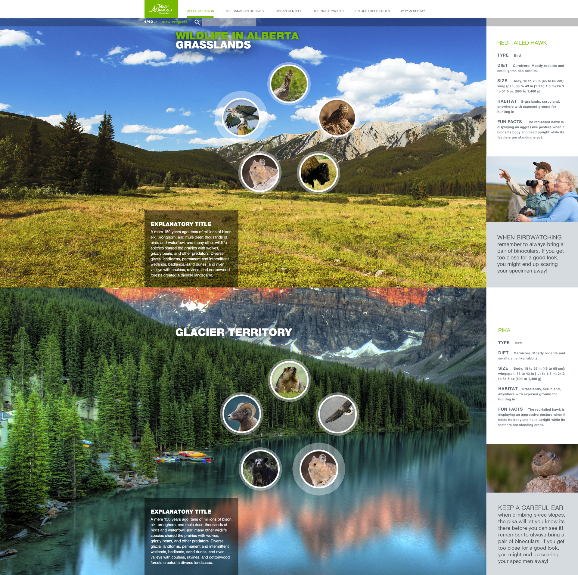 Wildlife Catalogue | Clickable Content Sidebar details