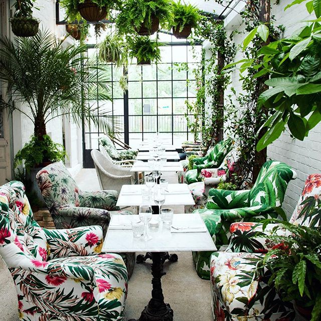 Ultimate #botanicalpickmeup - last summer inside the Greenhouse.