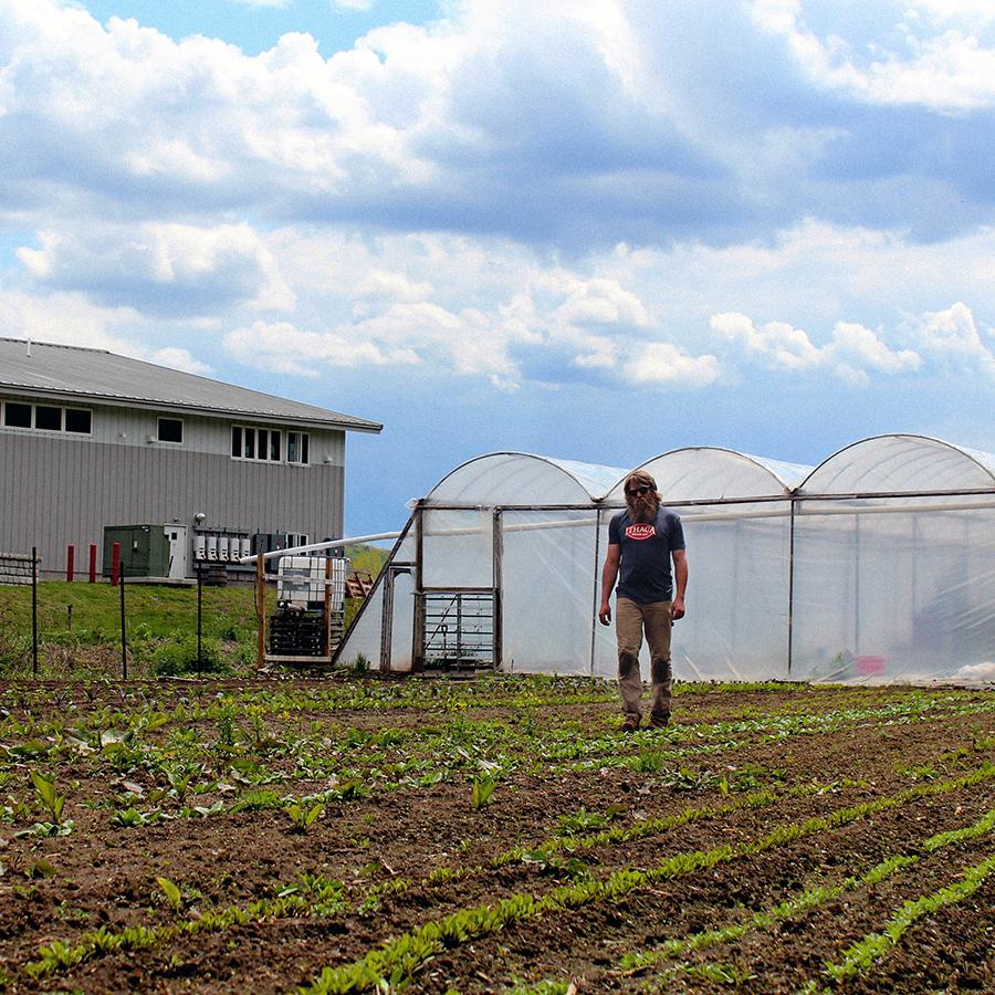 IBC Farm w Brewery-1.jpg