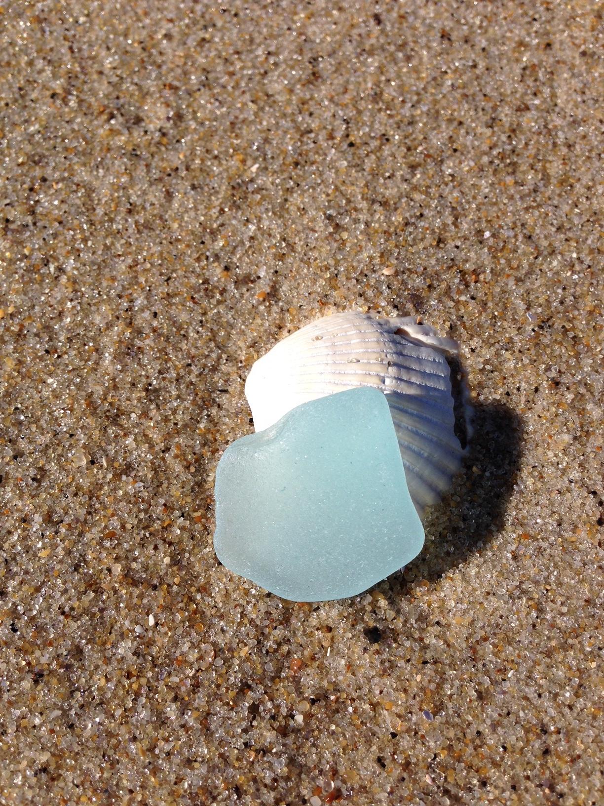 seaglass and shell.JPG