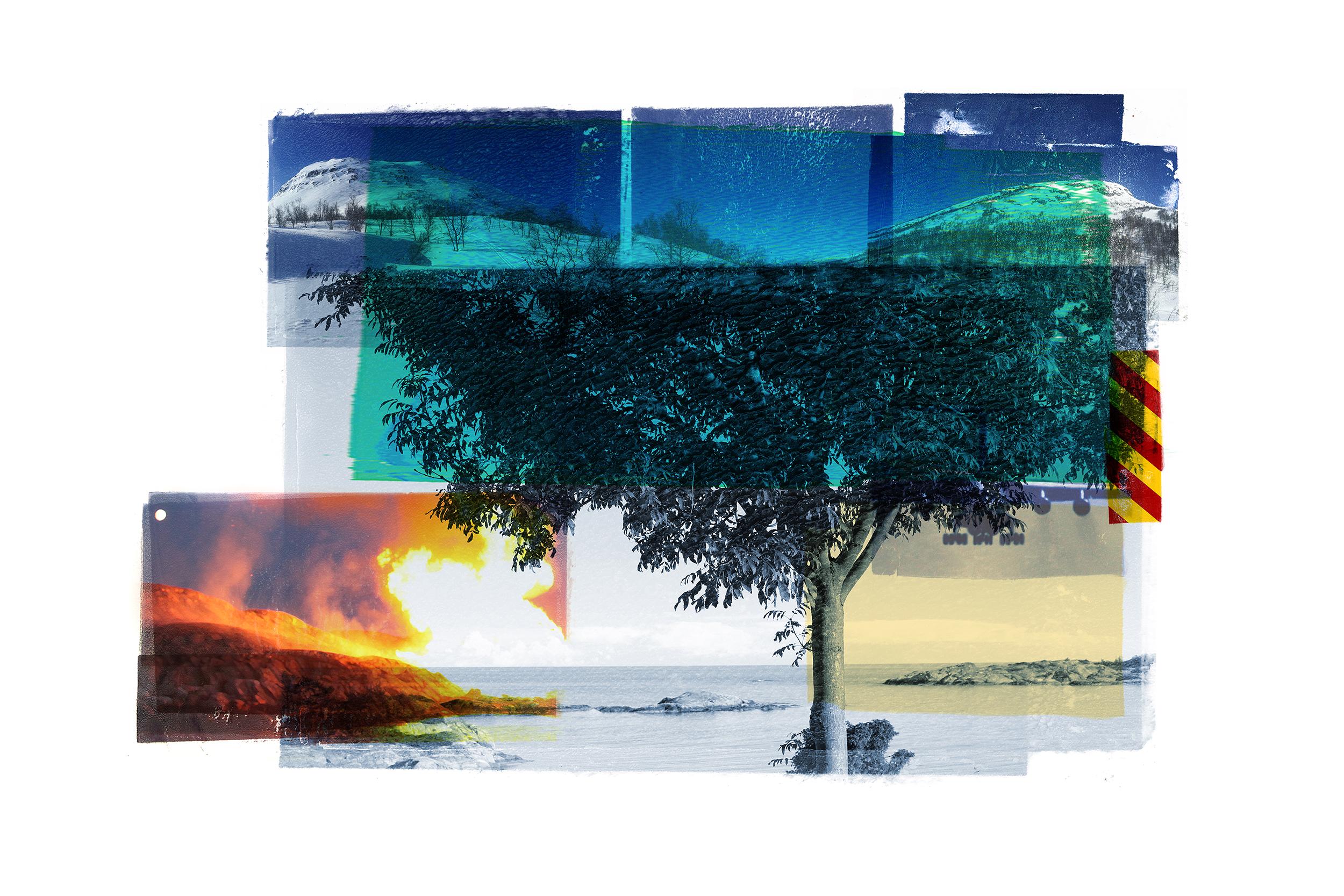 Reservoir / Blue Tree / Ritual (Breive)  Original Archival UV Pigment Print / BFK Rives 300 gr 120 x 80 cm / 47 x 32 in Edition of 50 + 5 Ap Editeur: Per Fronth Studios / Printer Henrik Aunevik  01/ 2016: