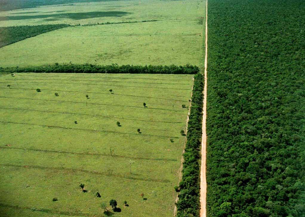 Border of Xingu Park, Brazil, 1998