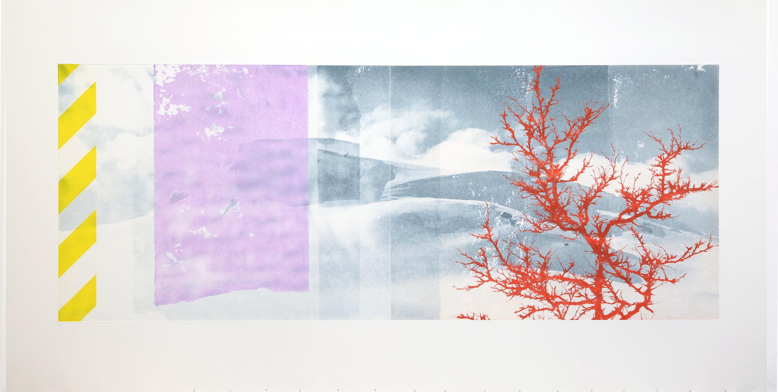 GHOSTPRINT: Reservoir / Birch in storm ( Setesdal )  Polymer / Etching / Drypoint 200 x 90 cm / 78,4 x 35,5 in Edition of 10 + 10 Ap Editeur: Per Fronth / Atelje Ole Larsen / Helsingborg  26/2015: