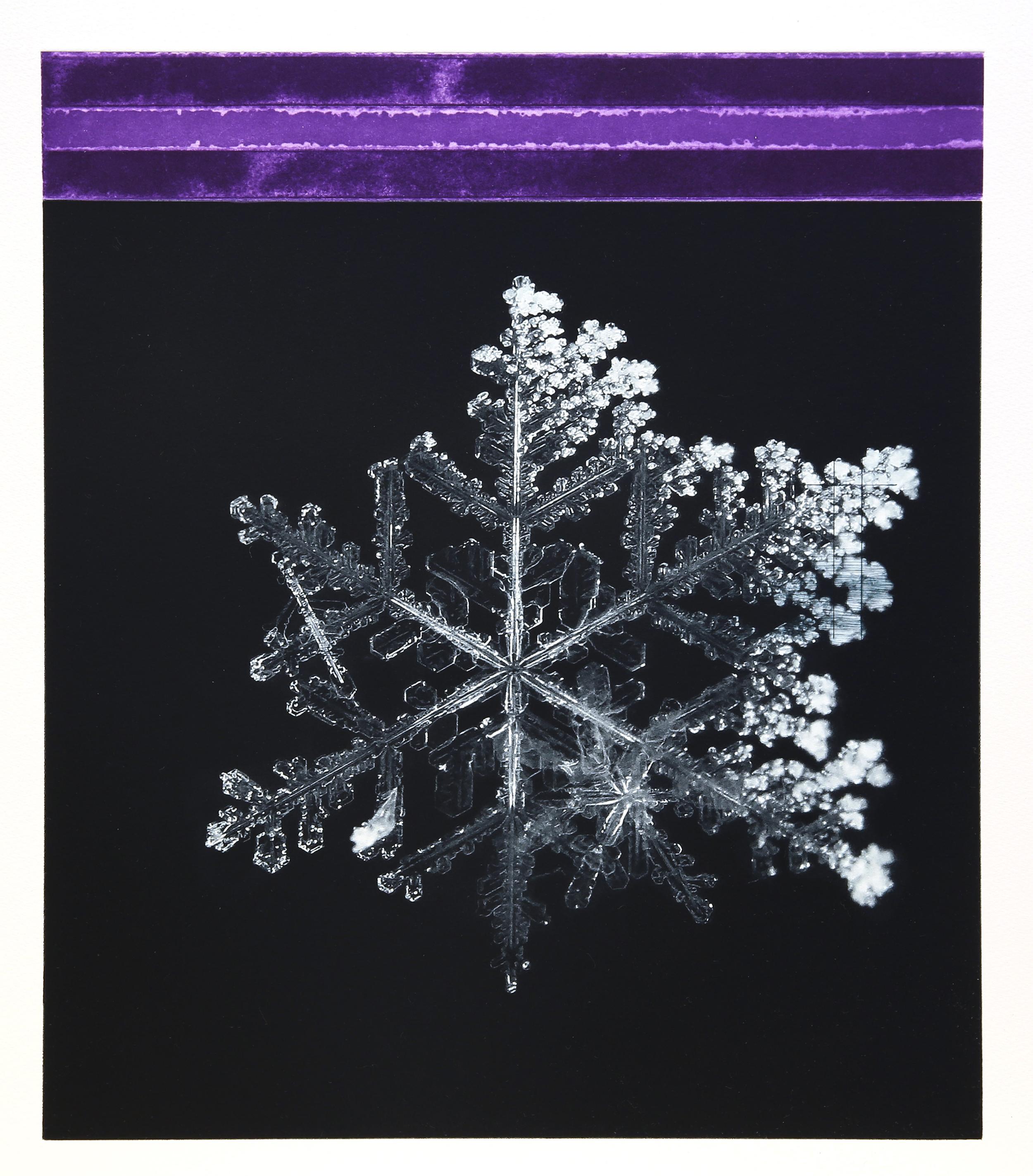 Crystal / Reservoir (Tesla) Violet  Polymer / Etching / Drypoint 40 x 45 cm / 15,7 x 17,7 in Edition of 40 + 7 Ap Editeur: Per Fronth / Atelje Ole Larsen / Helsingborg  38/2015:
