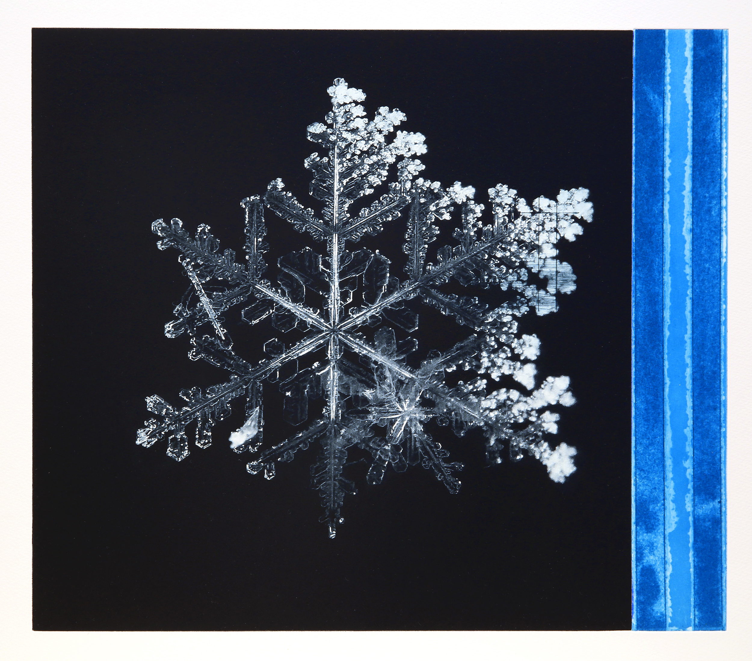 Crystal / Reservoir (Tesla) Phalo Blue  Polymer / Etching / Drypoint 40 x 45 cm / 15,7 x 17,7 in Edition of 40 + 7 Ap Editeur: Per Fronth / Atelje Ole Larsen / Helsingborg  39/2015: