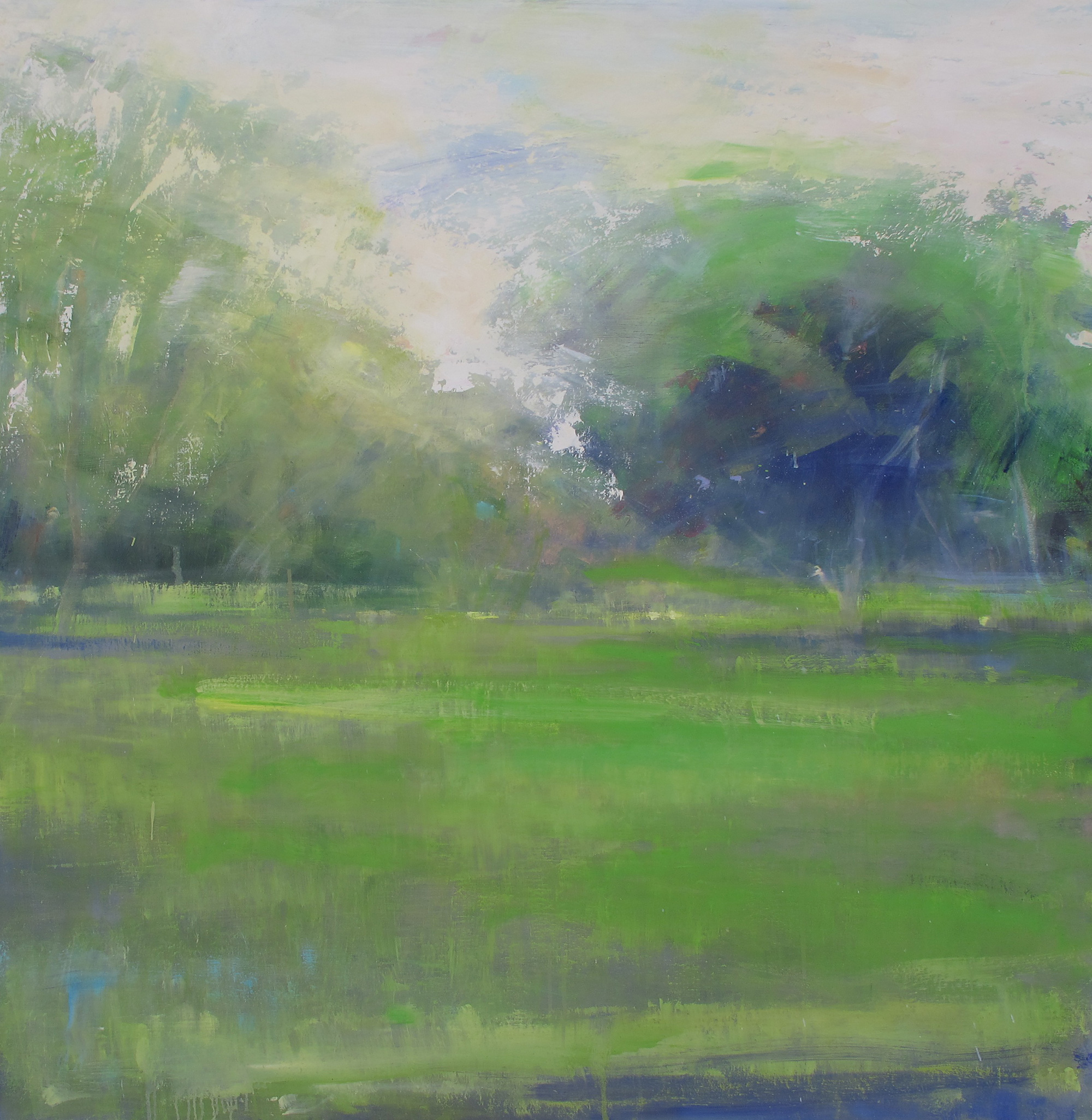 Trelissick Trees.  Oil on board  Sold