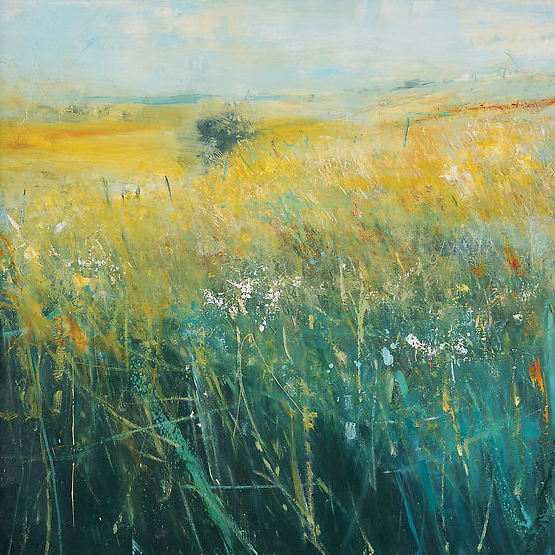 Summer Grasses, Gwithian Valley.  Oil on board. 77 x 77cm  Sold