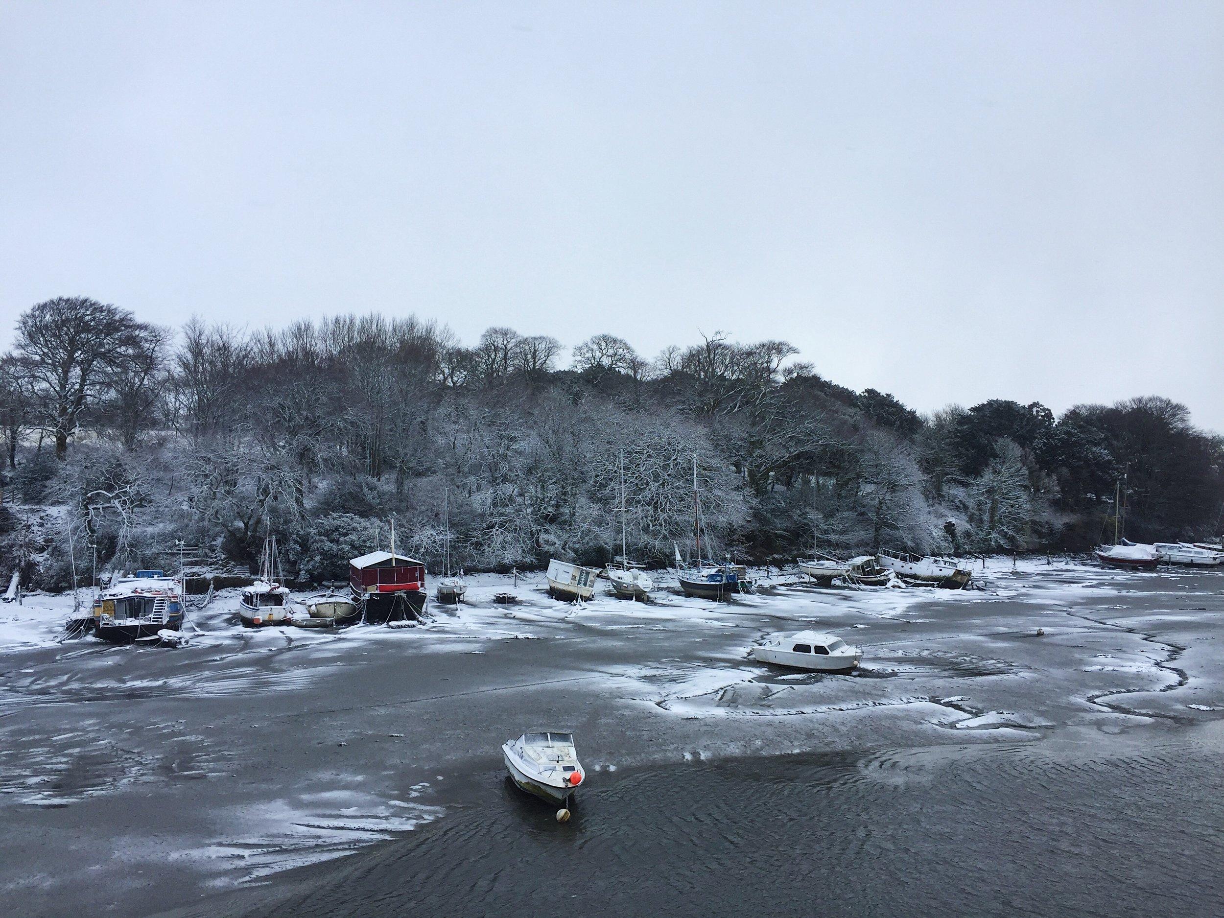 Penryn River in March....