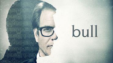 bull_electric.jpg