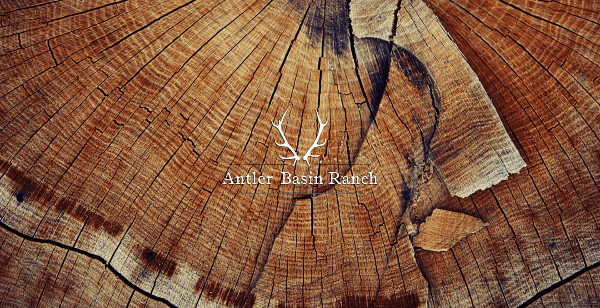 Wood Overlay.jpg