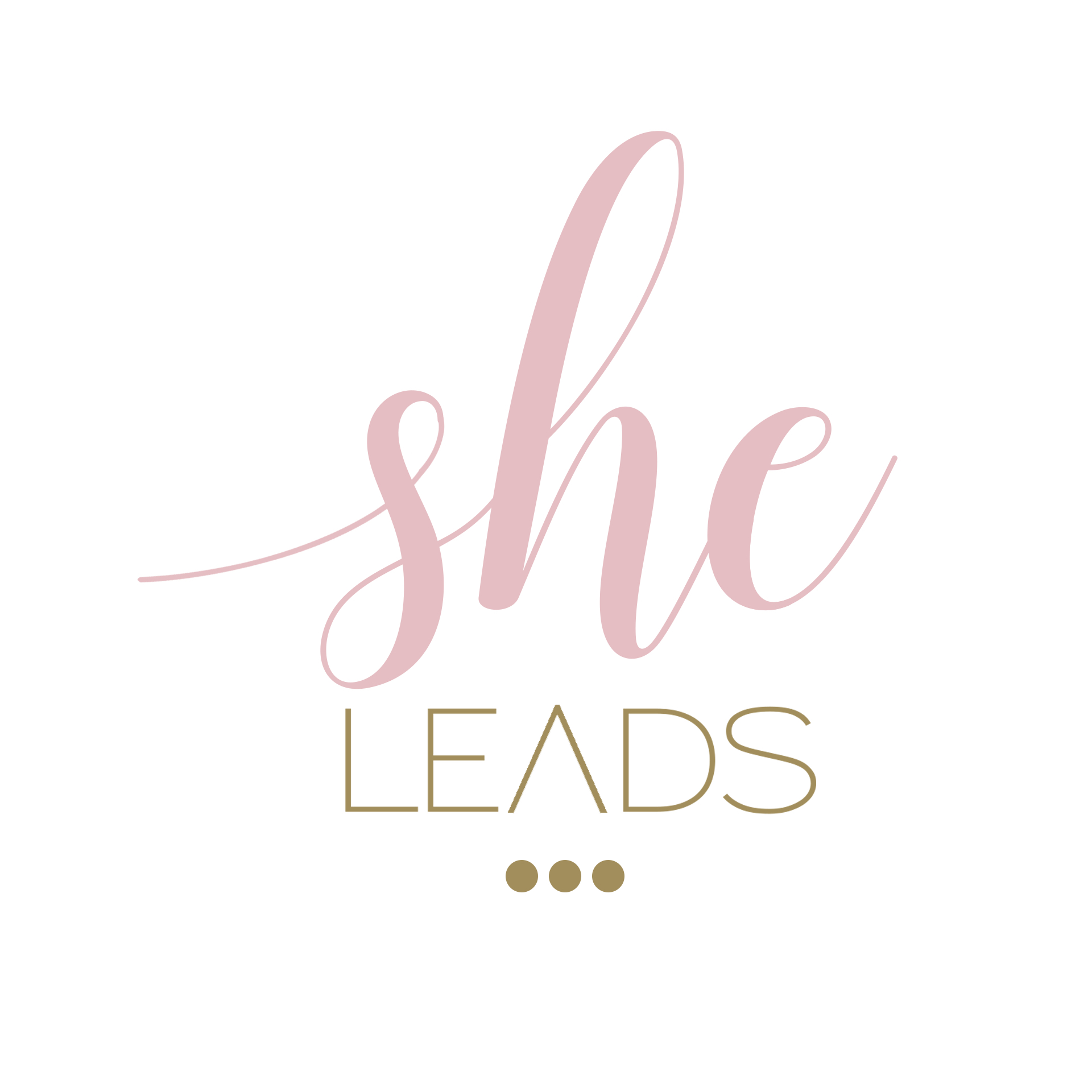 Connect Events - Watch for a She Leads Connect Event coming to a city near you...