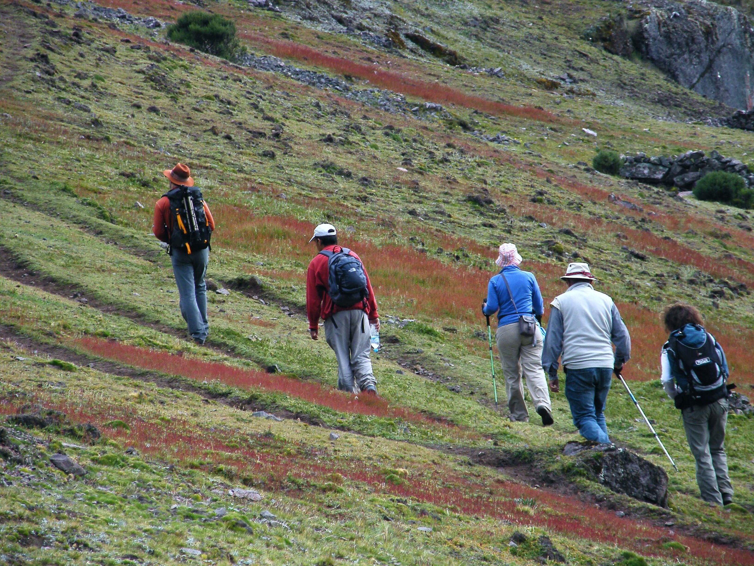 Hiking Peru   Machu Picchu & Rainbow Mountain Trek    Inquire