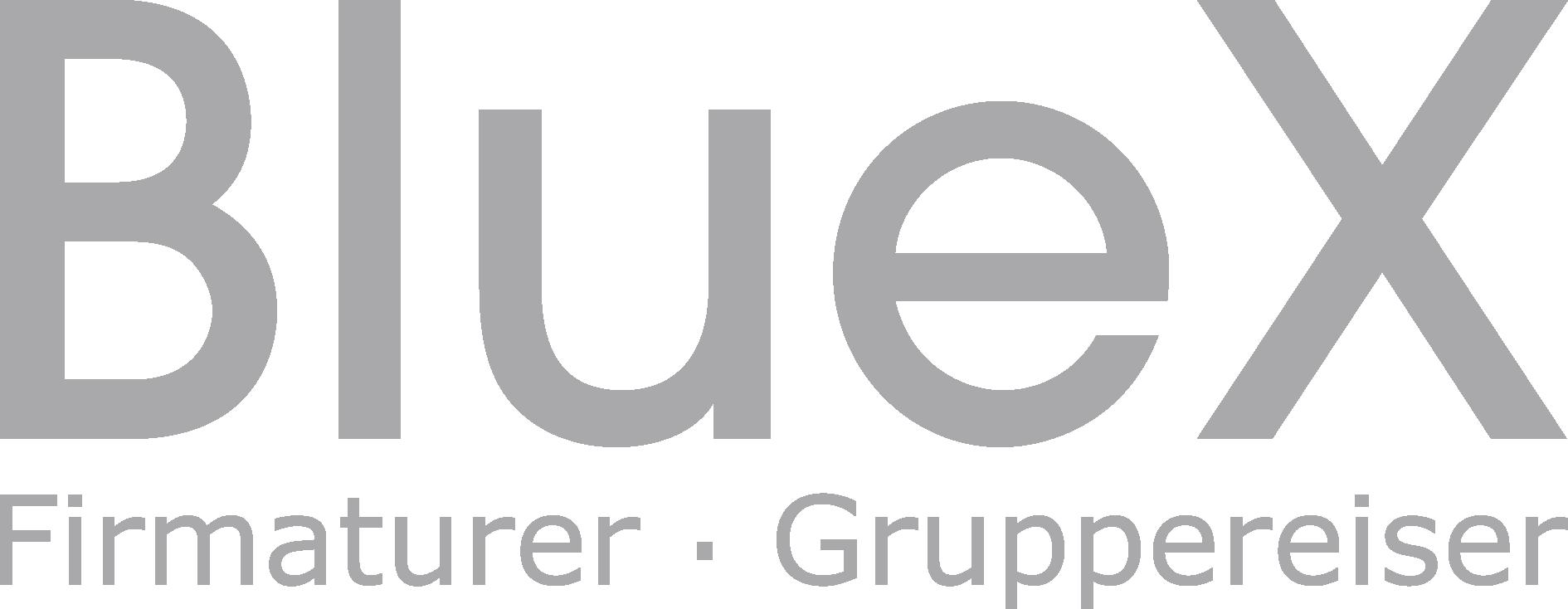 BlueX logo