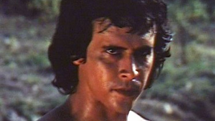 Barry Prima: Indonesian Actor and Martial Artist