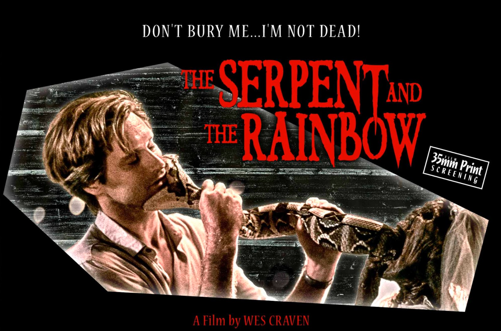 Serpent-and-the-Rainbow-1.png