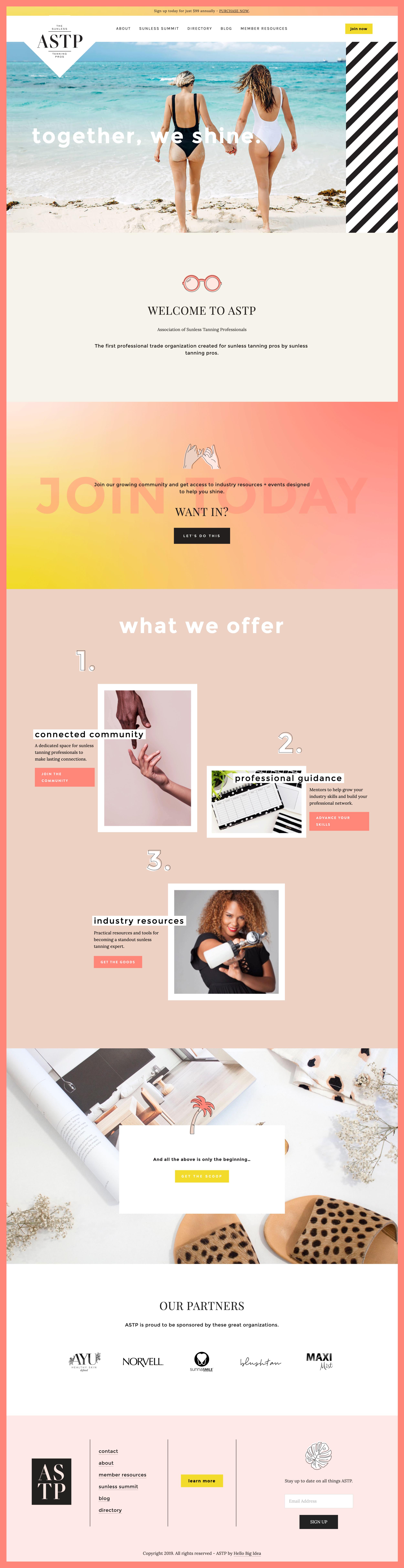 web design cohen illustration.png