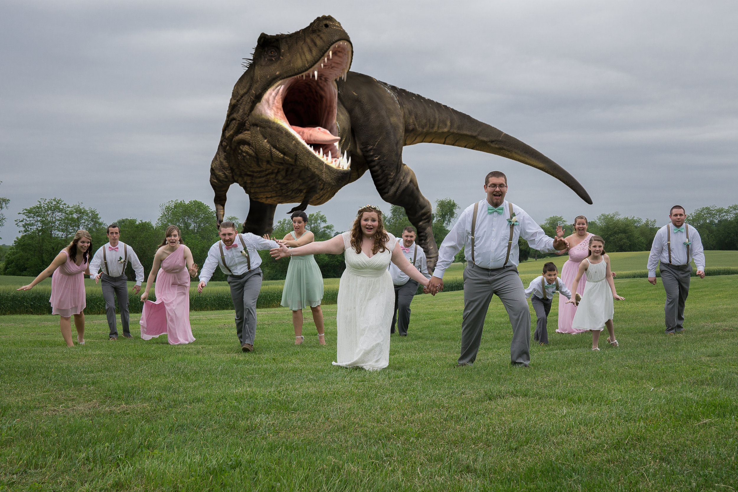 funny bridal party photos, photoshop