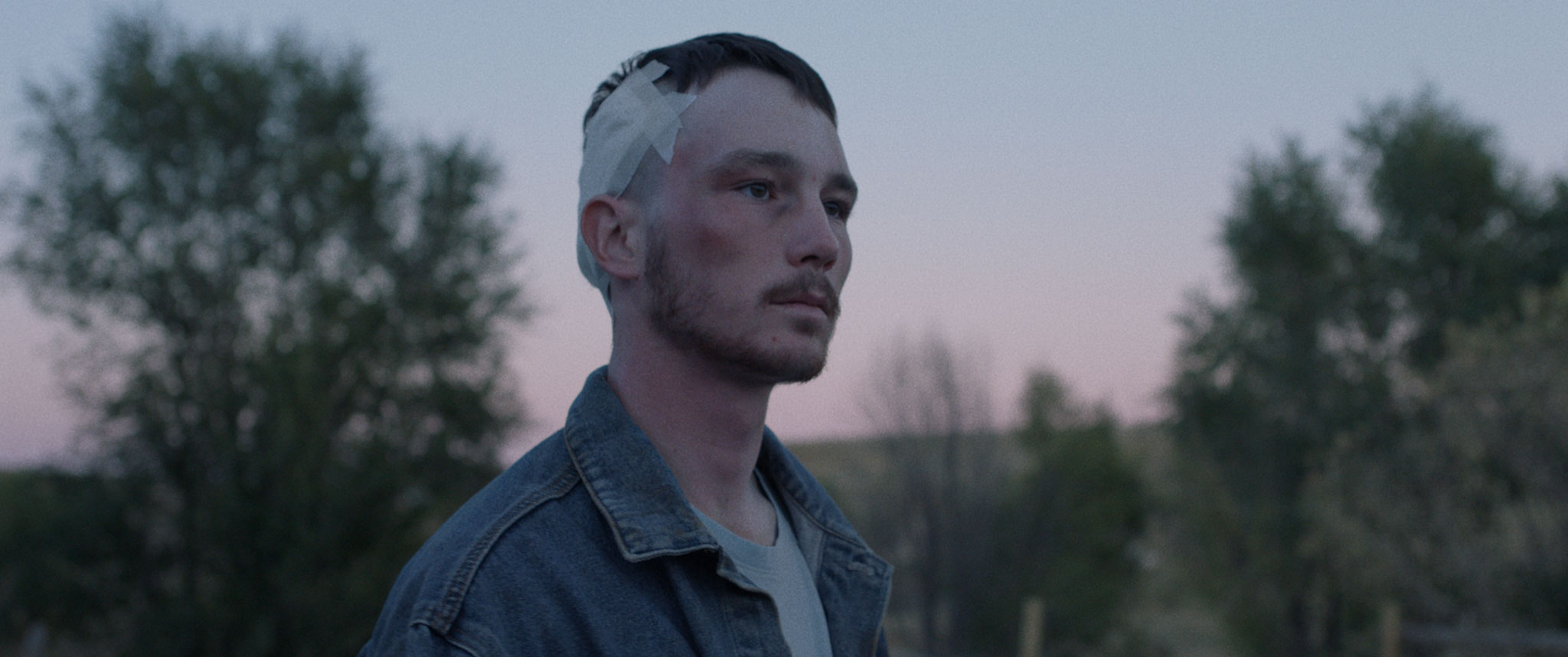 8. The Rider (dir. Chloé Zhao) - After a riding accident leaves him unable to compete on the rodeo circuit, a young cowboy searches for a new purpose.