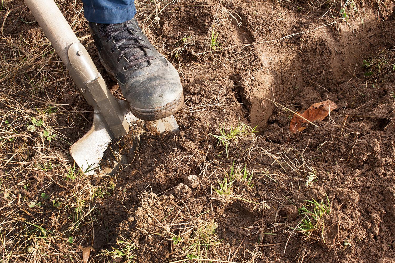 Digging in dirt. Repairing flood berm