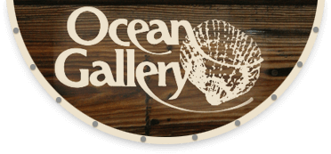 drifters_rentals_oceangallery_services.png