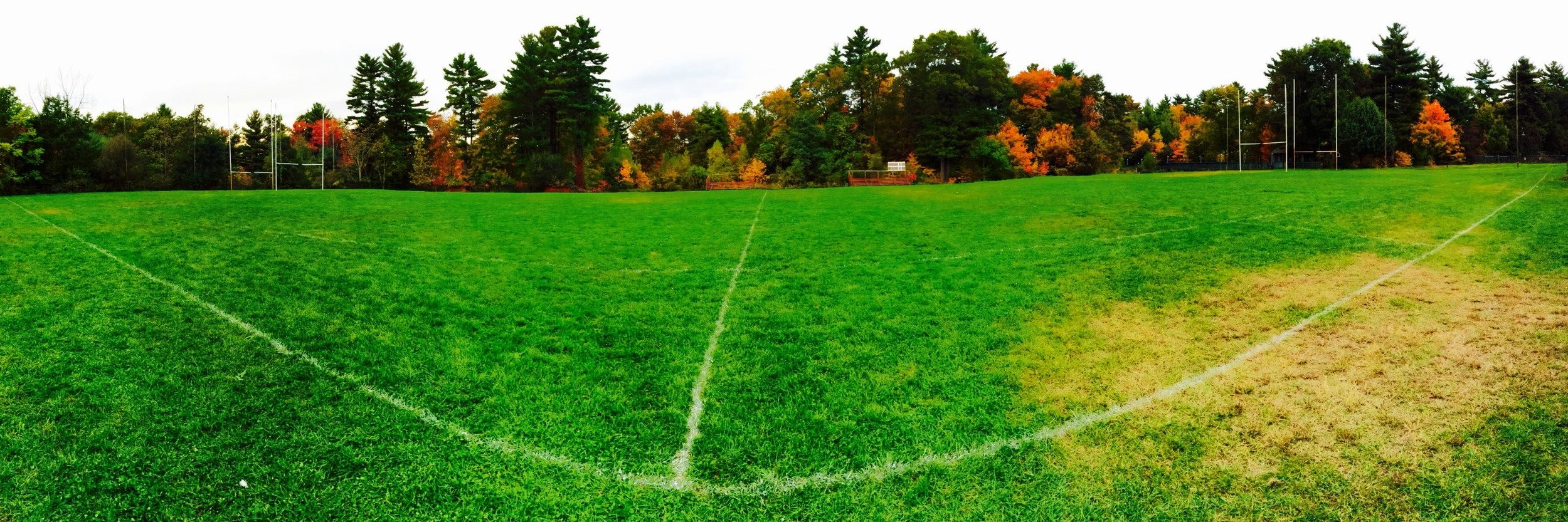 Canton pitch.jpg