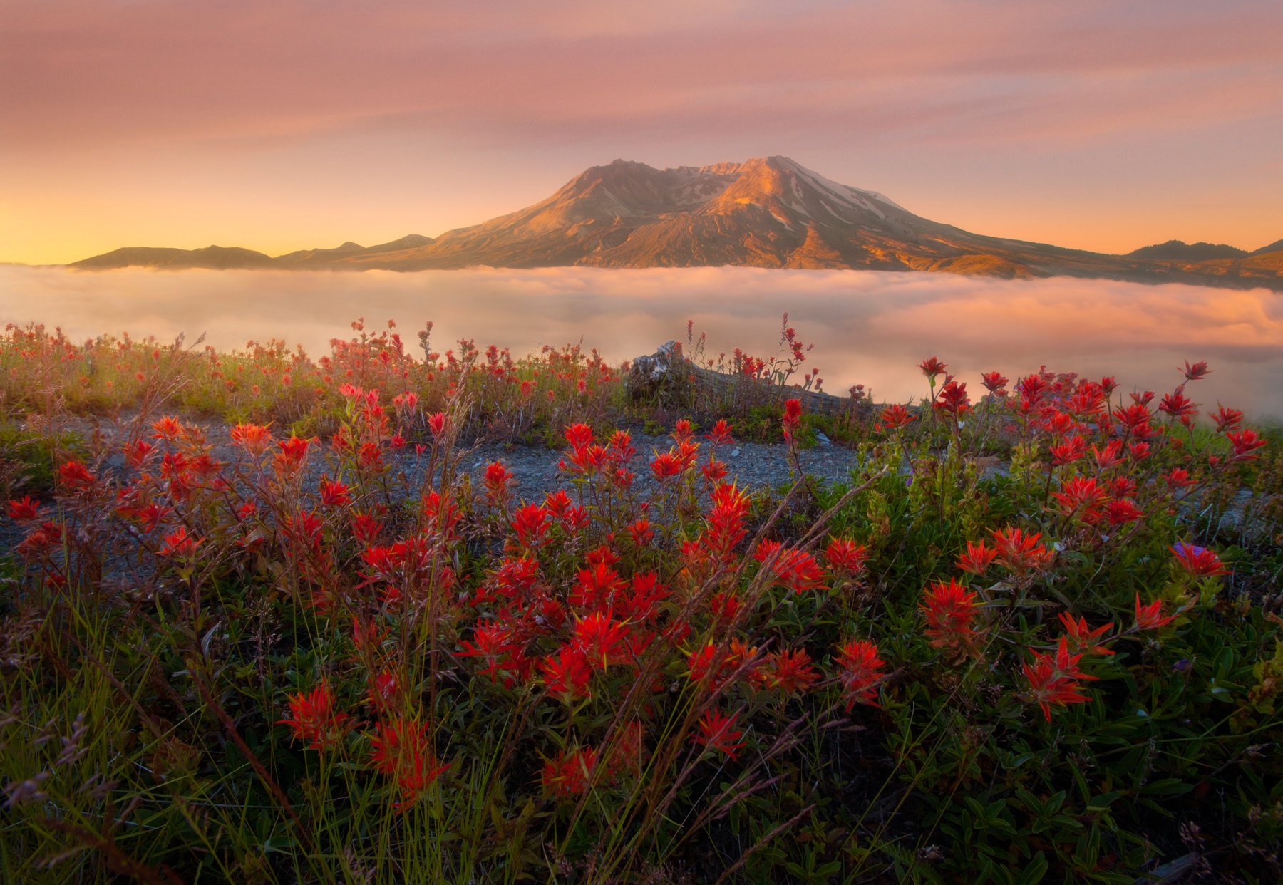 Mt+St+Helens+FINAL+Dark+-+FINA-2246990101-O.jpg