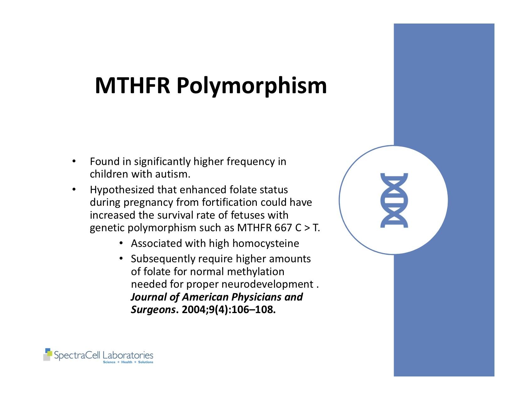 Autism and Thyroid slides 8.jpg