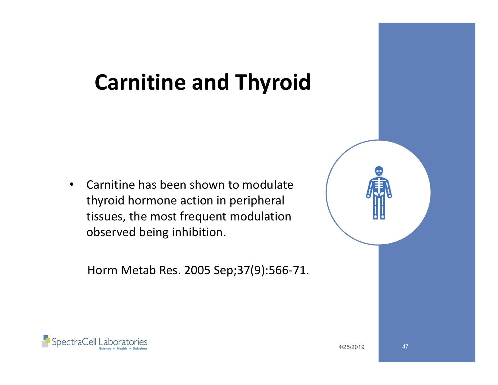 Autism and Thyroid slides 47.jpg