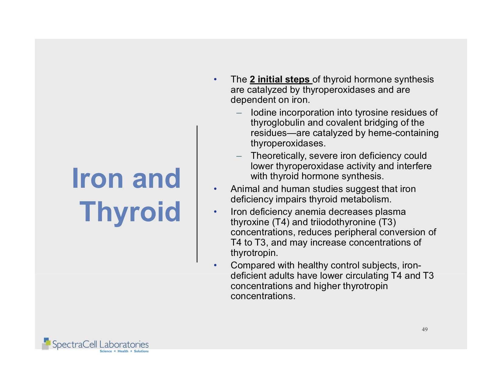 Autism and Thyroid slides 49.jpg