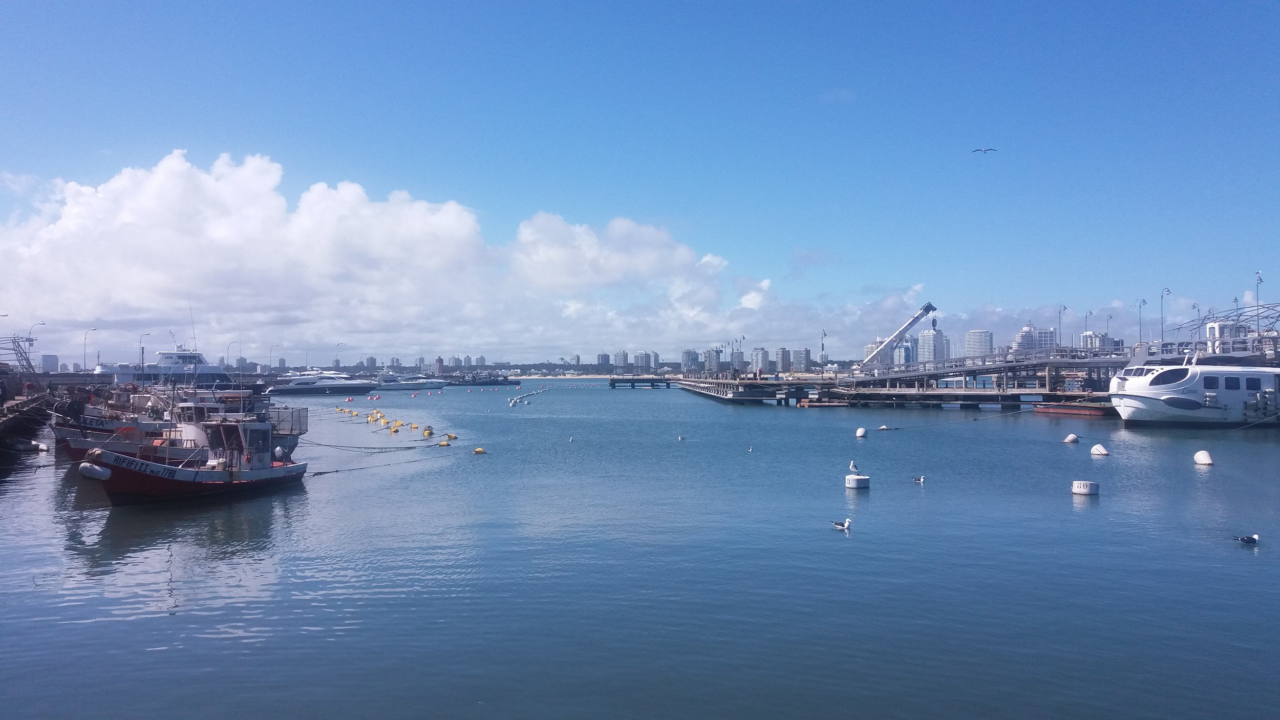 Punta del Este, Uruguay vista desde el puerto.