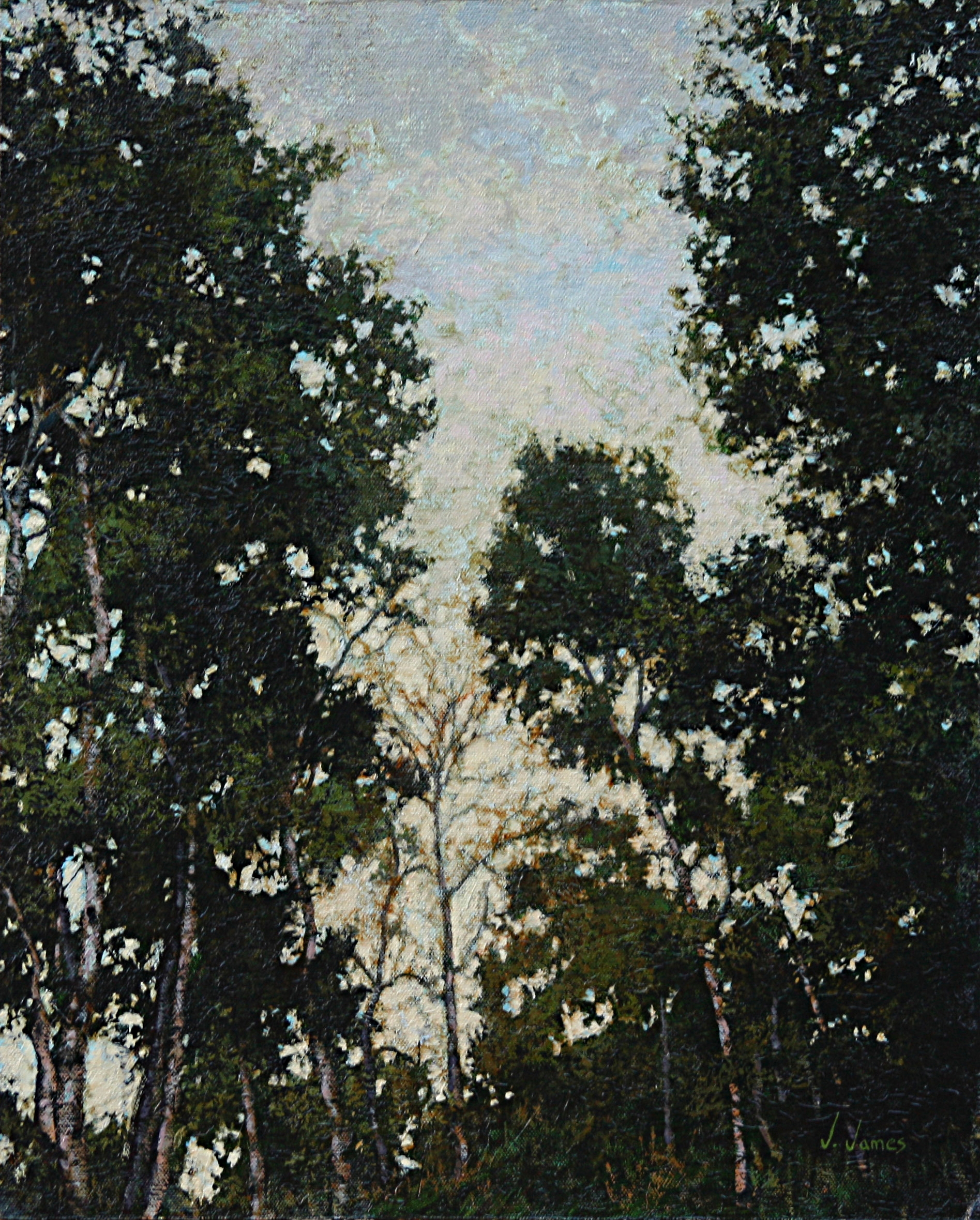 """Meeting of the Trees, 20"""" x 16"""" Oil on Canvas"""