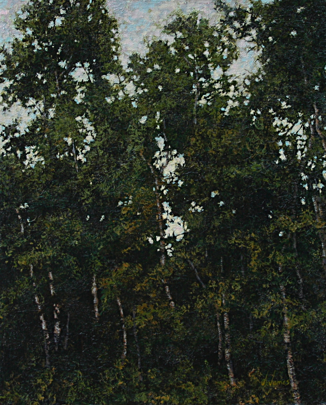 """The Opening, 20"""" x 16"""" Oil on Canvas"""