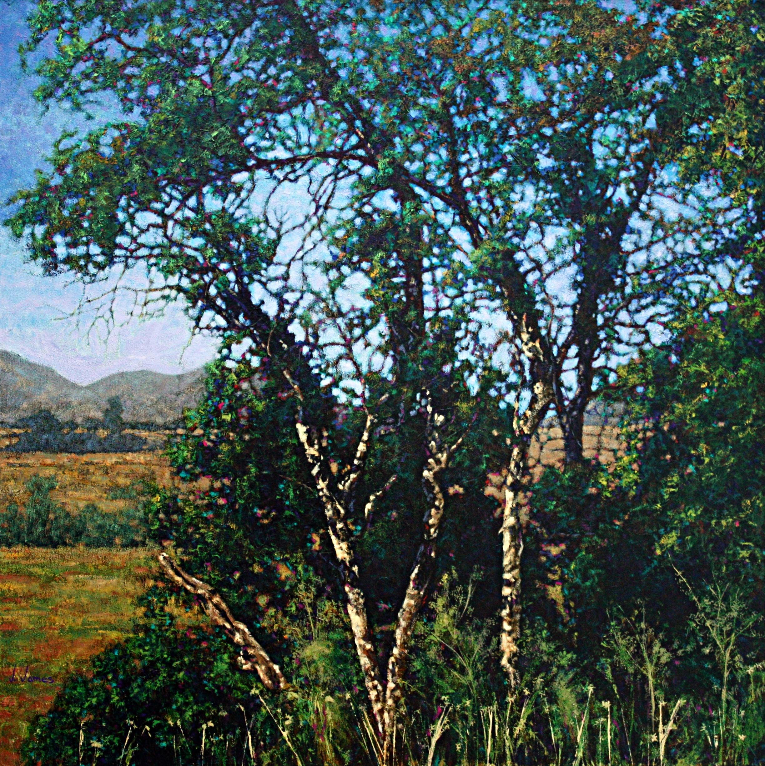 "American Tenedor, 36"" x 36"" Oil on Canvas"