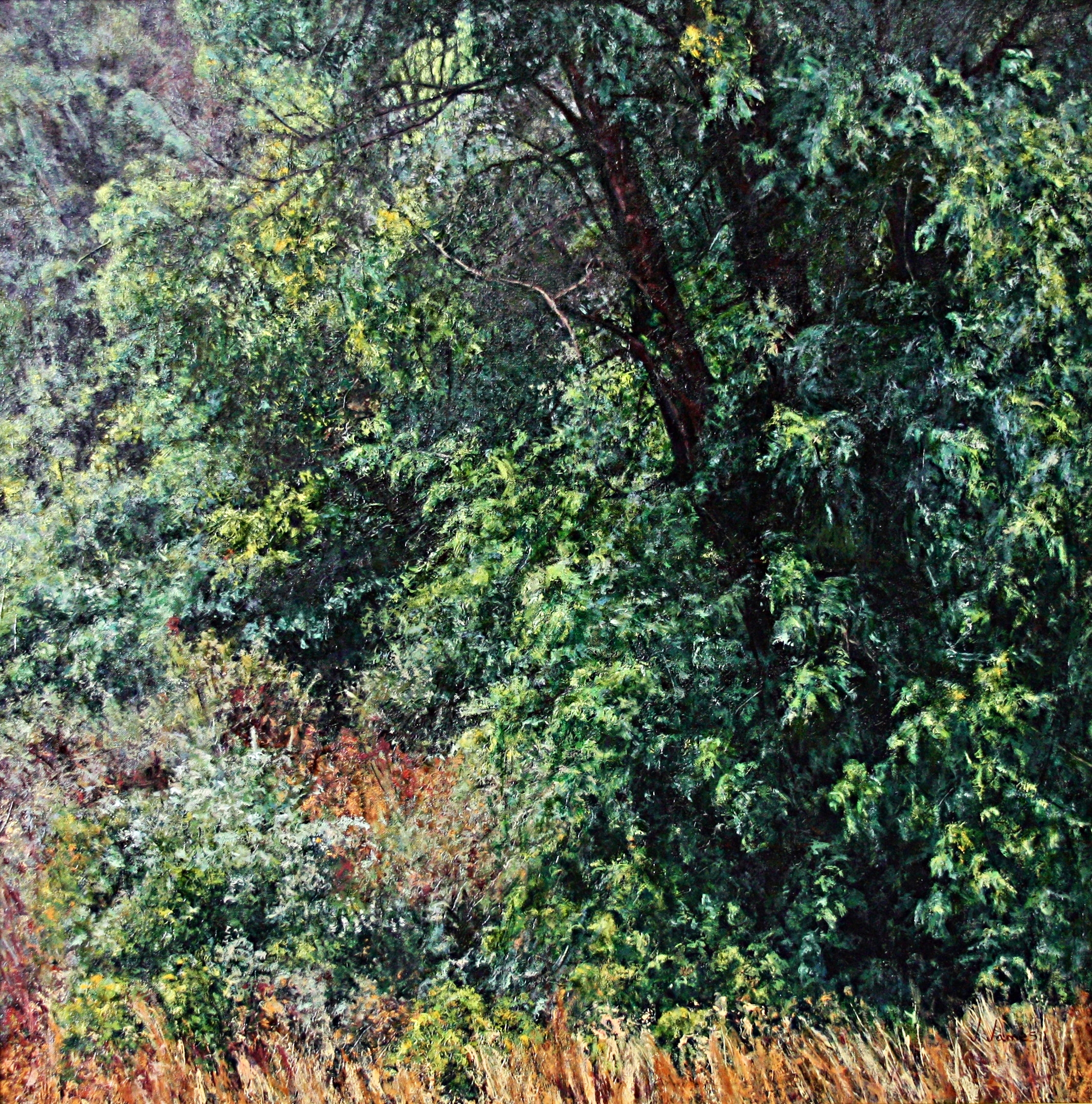 "After a Sundance Storm, 30"" x 30"" Oil on Canvas"