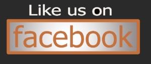 facebook logo1.jpg