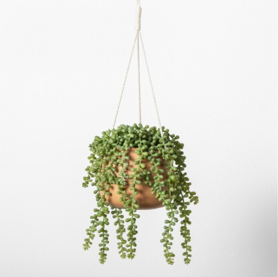 hanging plant string.PNG