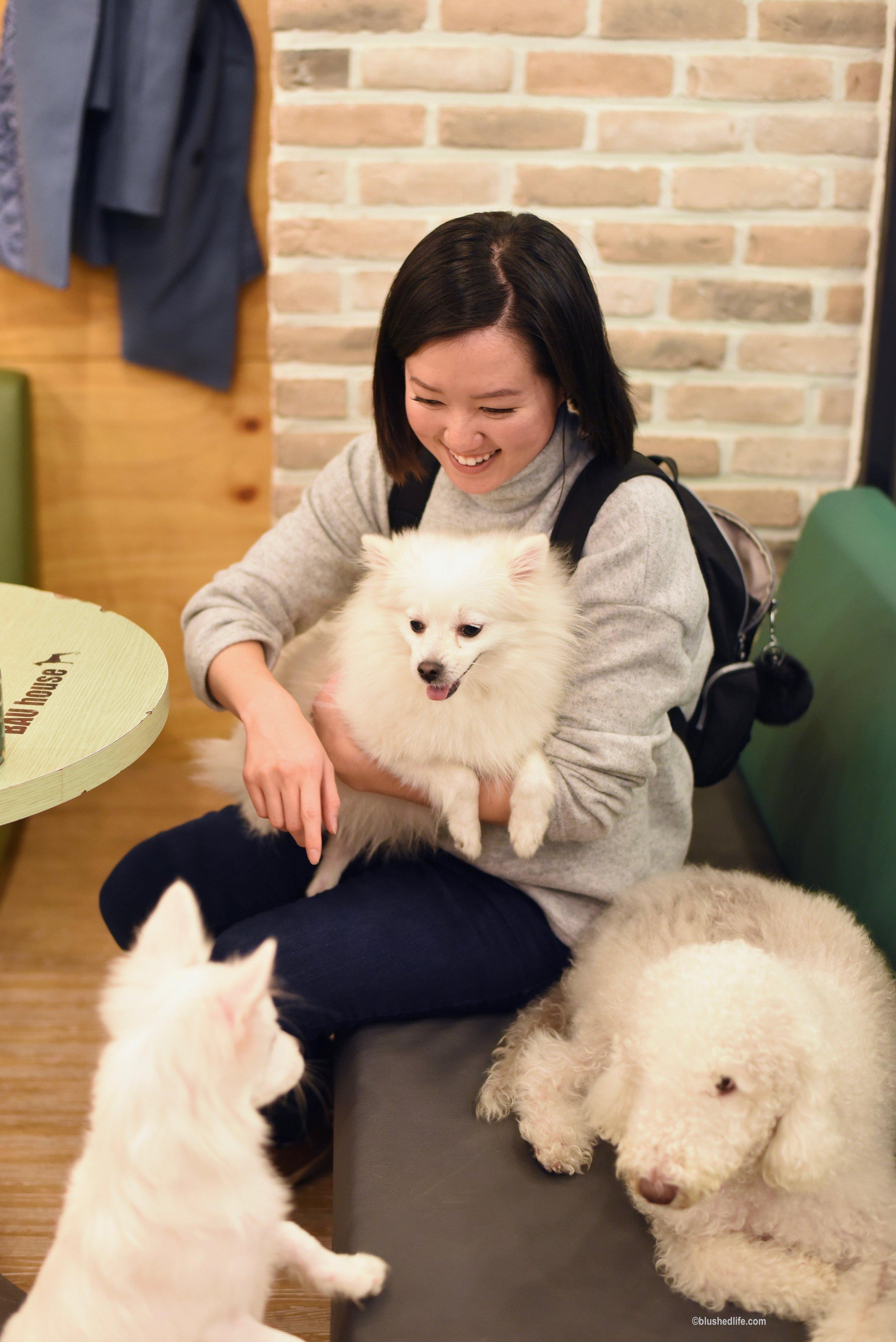 Instagram Korea Dog Cafe Bauhouse_DSC_1098.jpg