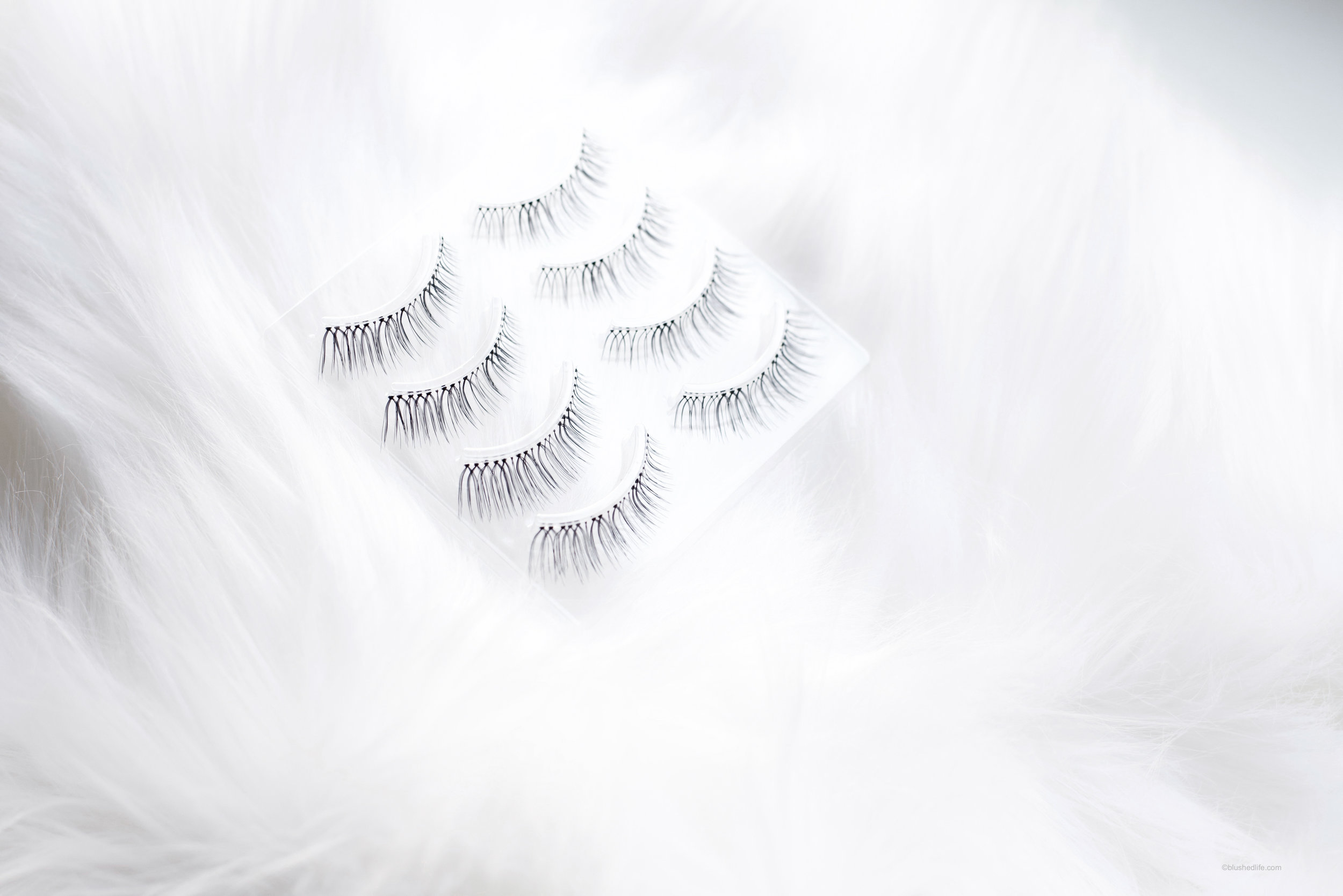 false lashes for asian eyes miche bloomin_DSC_3682-2.jpg