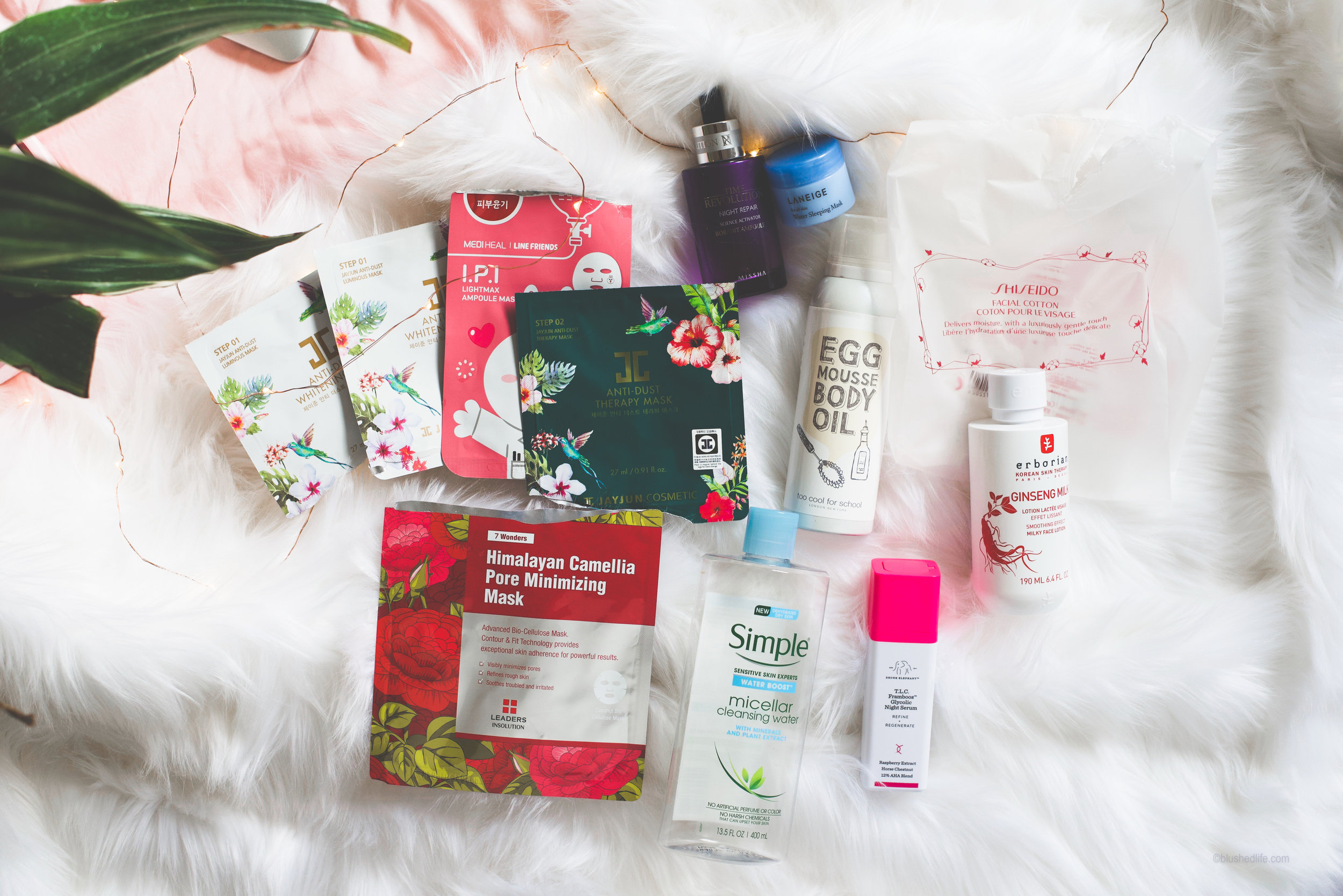 Feb 2018 Favorites & Empties_DSC_4177-2.jpg