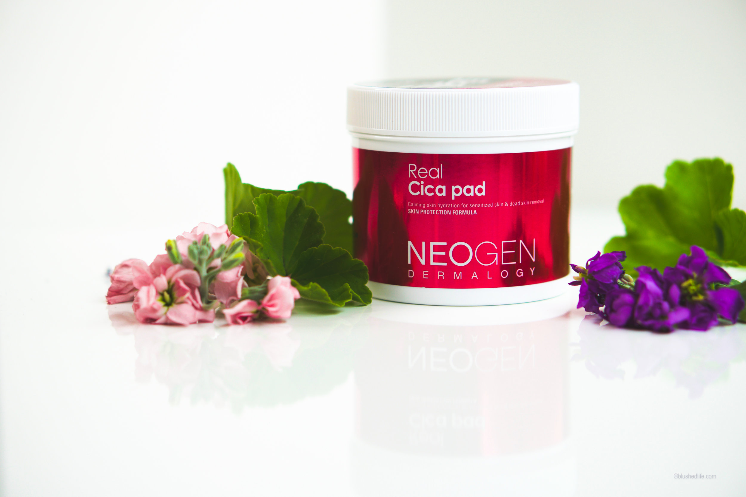 Neogen Real Cica Pad Review Comparison-07435.jpg