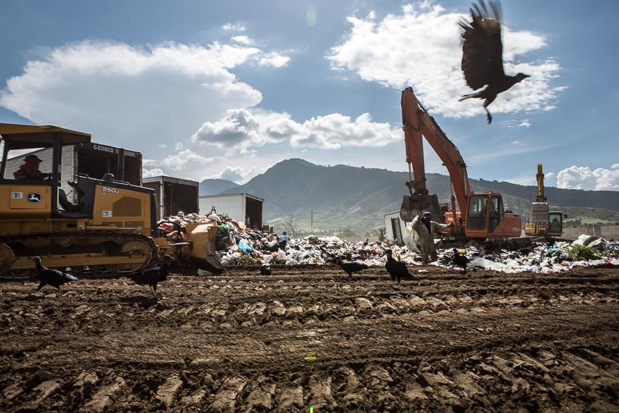 """Zopes"" or black vultures are a contsant presence for the guajeros at the AMSA landfill, a model solid waste project near Guatemala City. Km 22 Landfill, Villa Nueva, Guatemala.  ©Cindy Bajema 2014"