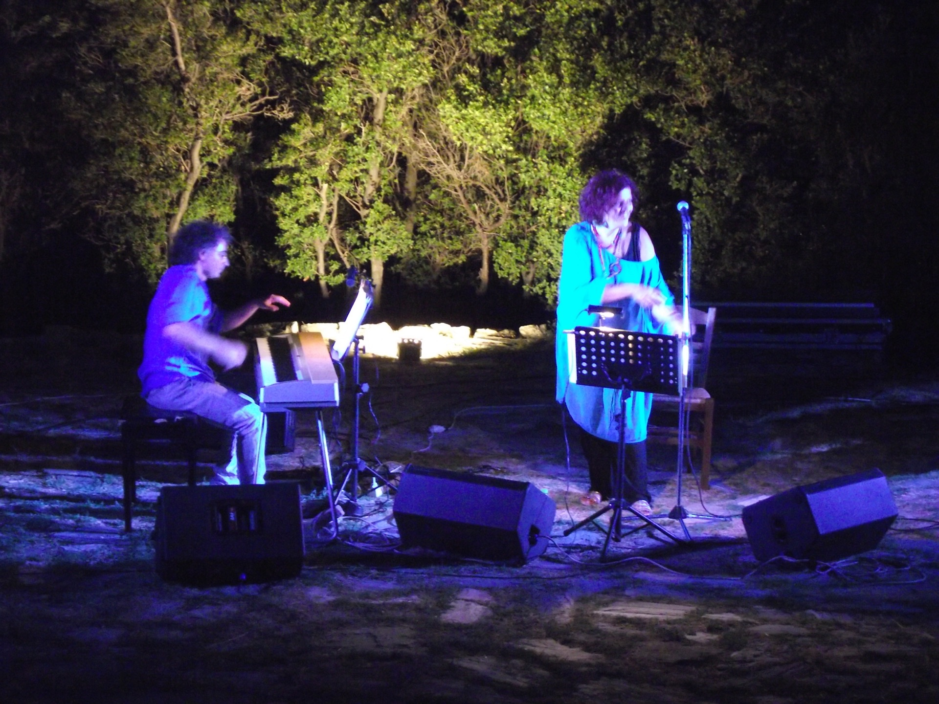 Aloni festival 2013 206.JPG