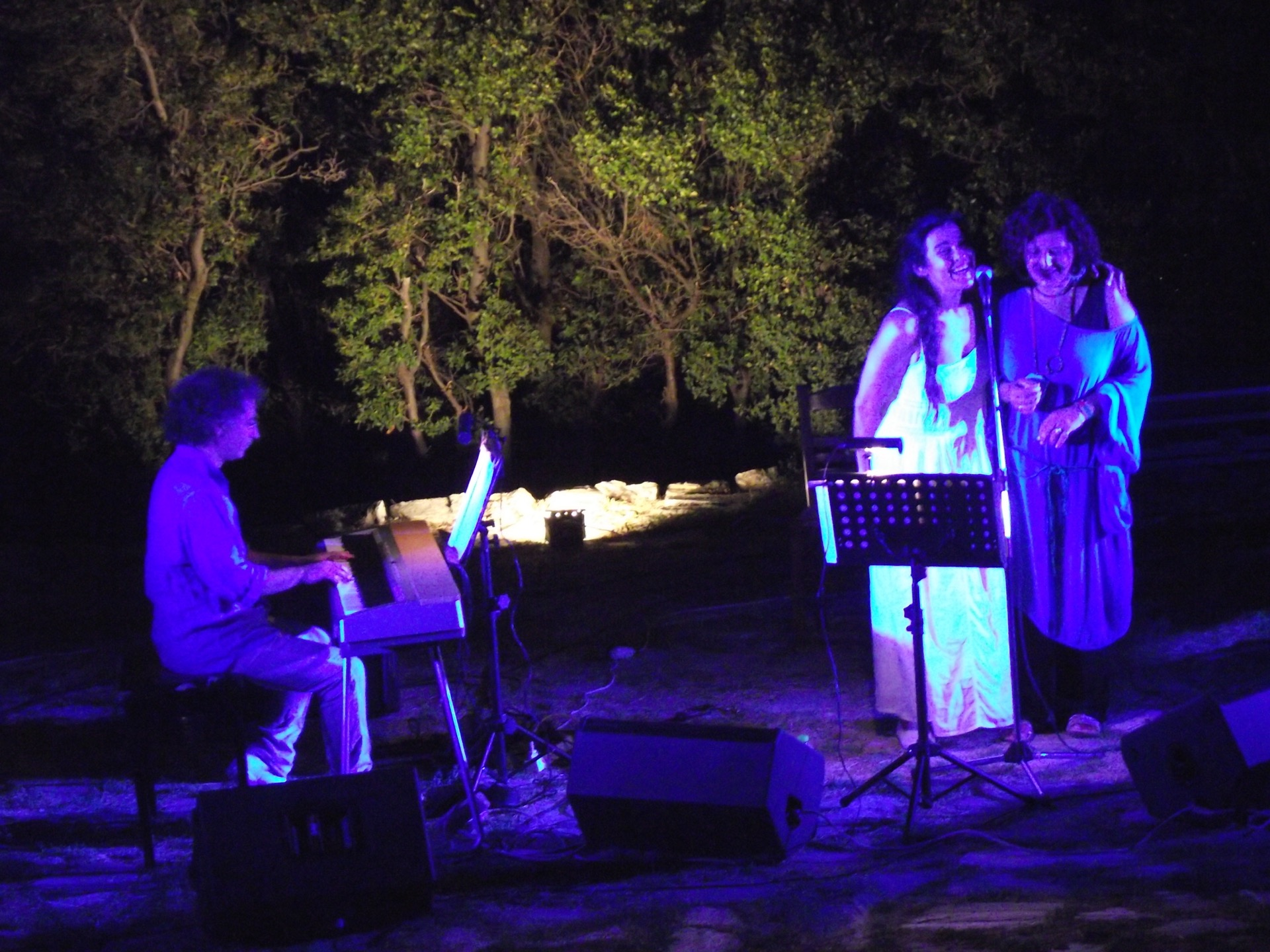 Aloni festival 2013 225.JPG
