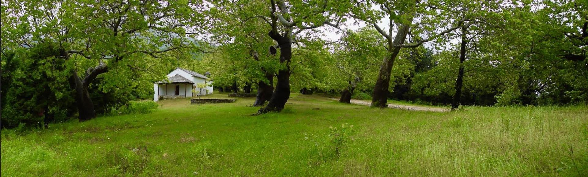 Καθημερινή εξειδικευμένη σωματική και φωνητική εξάσκηση με τον Κωστή Σφυρικίδη σε υπαίθριο χώρο στο δάσος.