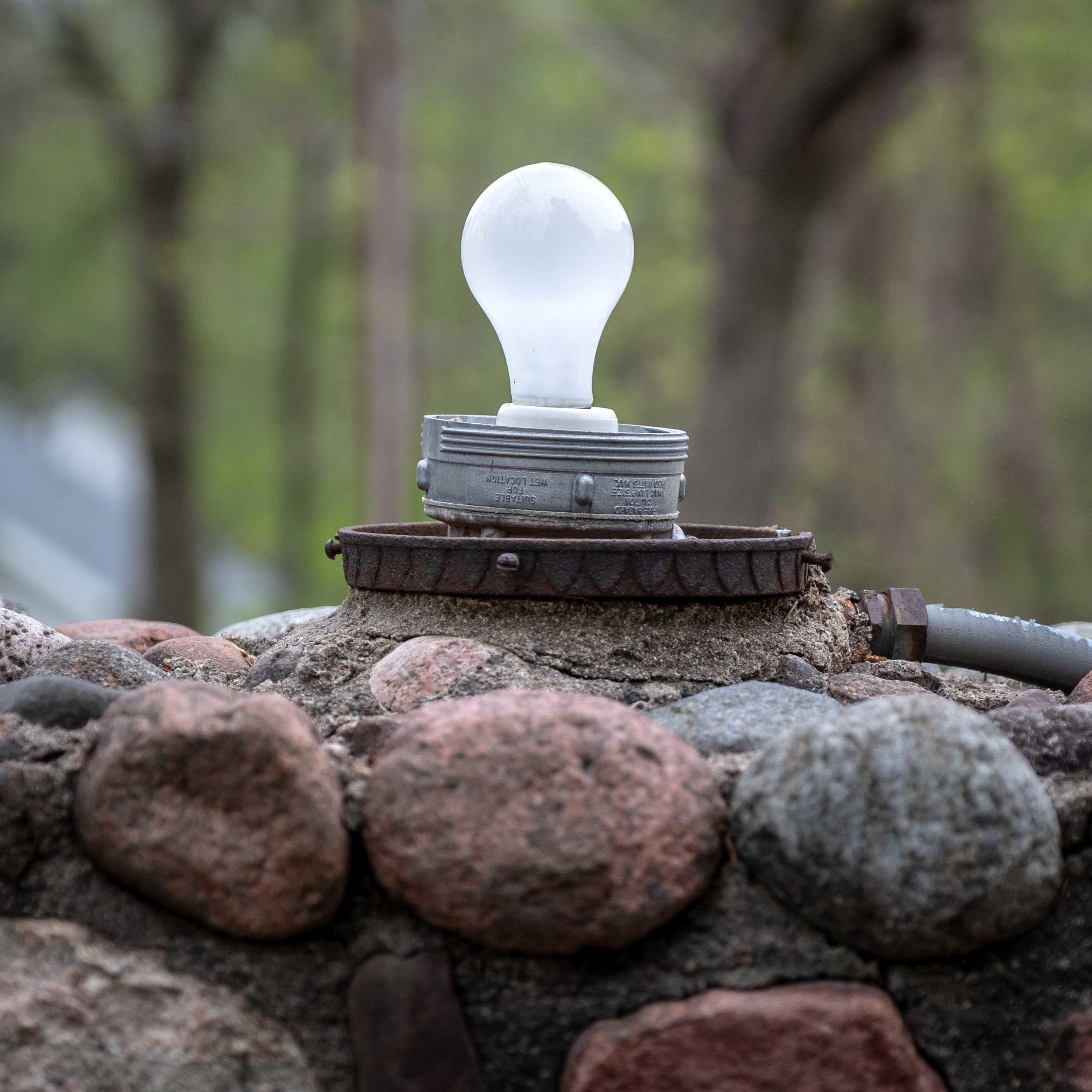 day 3c bulb.jpg