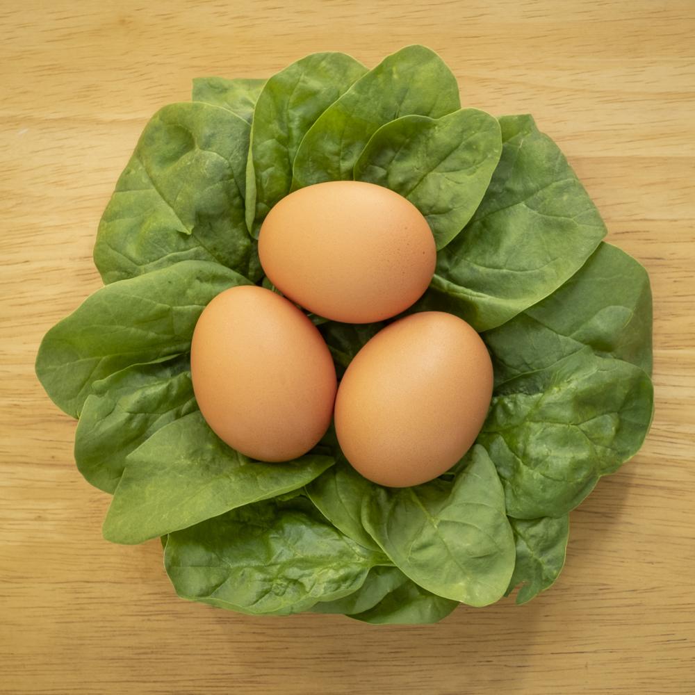 egg salad 1.jpg
