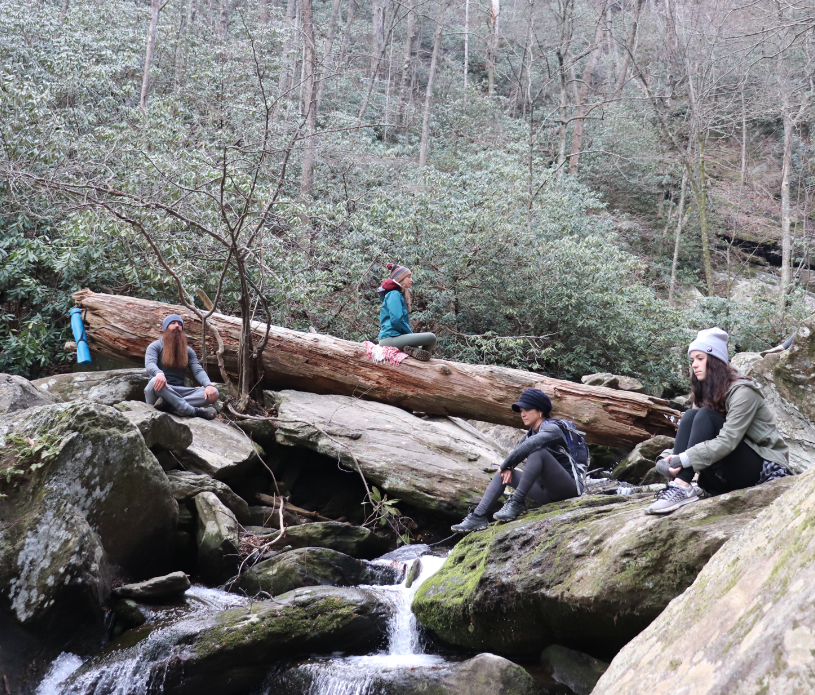 waterfall-yoga-hike-meditation-experience-asheville.png