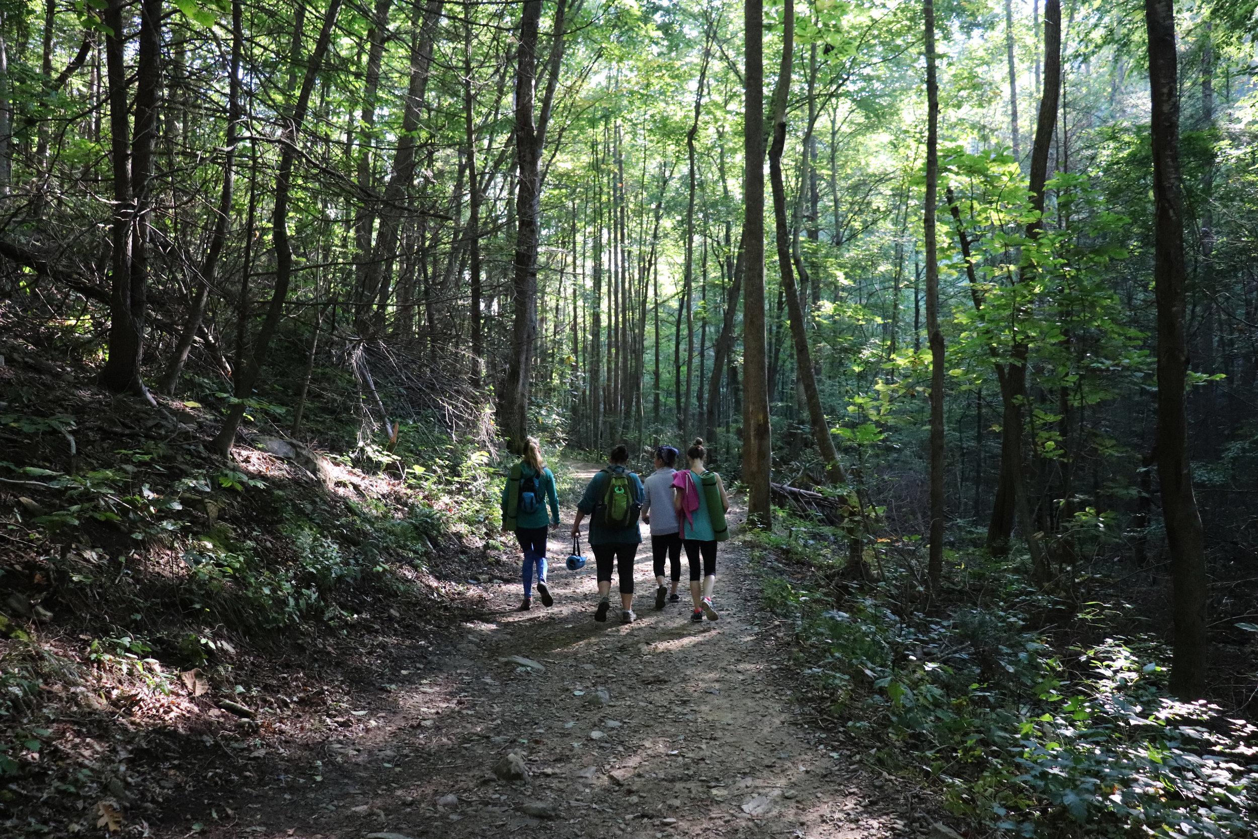 Forest Bathing Yoga Hiking.JPG