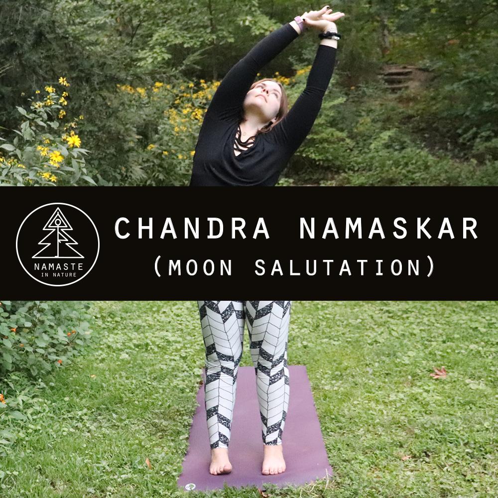 Audra_Chandra_Namaskar_Sequence.jpg