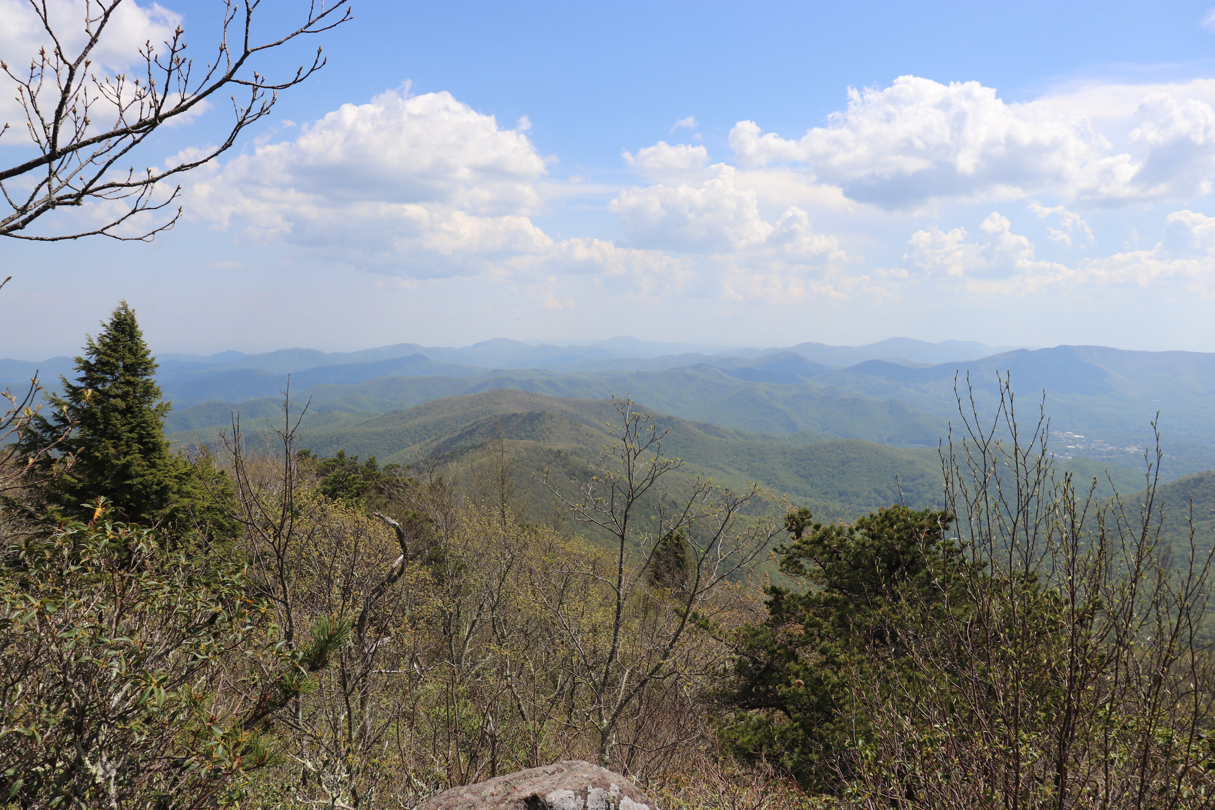 View from the Graybeard Mountain Trail © Namaste in Nature
